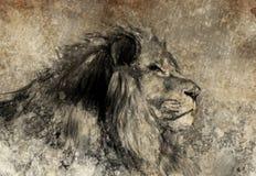 Illustrazione fatta con la compressa digitale, leone nella seppia Immagine Stock