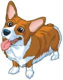 Illustrazione felice del fumetto di vettore del cane del Corgi Fotografie Stock Libere da Diritti