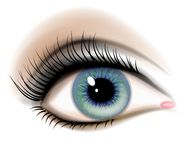 Illustrazione femminile dell'occhio umano Fotografia Stock Libera da Diritti