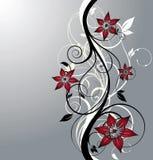 Illustrazione floreale Immagini Stock