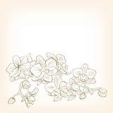 Illustrazione floreale astratta di vettore per progettazione. illustrazione vettoriale
