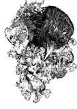 Illustrazione floreale del corvo Immagine Stock