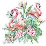 Illustrazione floreale del fiore e del fenicottero dell'acquerello Mazzo con le foglie verdi ed i fiori tropicali per nozze stazi illustrazione di stock