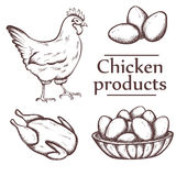 Illustrazione grafica dei prodotti a base di pollo con l'iscrizione Fotografie Stock Libere da Diritti