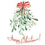 Illustrazione (immagine) di un vischio dell'acquerello di Natale Immagine Stock Libera da Diritti