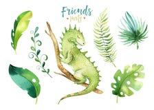 Illustrazione isolata scuola materna degli animali del bambino per i bambini Disegno tropicale di boho dell'acquerello, iguana tr Immagine Stock