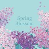 Illustrazione lilla di vettore del fiore della molla Fotografia Stock Libera da Diritti