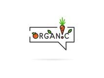 Illustrazione lineare organica di vettore su fondo bianco Fotografia Stock Libera da Diritti