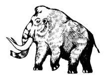 Illustrazione mastodontica di vettore dell'incisione Fotografia Stock Libera da Diritti