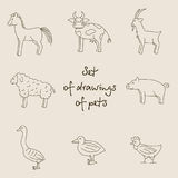 Illustrazione monocromatica lineare di vettore degli animali domestici Fotografia Stock Libera da Diritti