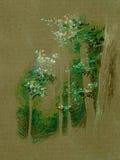 Illustrazione naturale degli alberi forestali   Fotografia Stock
