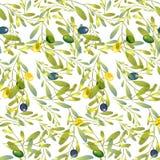 Illustrazione - olive modello, modello di fiori illustrazione vettoriale