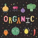 Illustrazione organica del fumetto sveglio con la frutta e le verdure Fotografia Stock