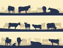 Illustrazione orizzontale degli animali domestici dell'azienda agricola. Fotografia Stock Libera da Diritti