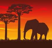 Illustrazione piana circa progettazione dell'Africa Immagini Stock Libere da Diritti
