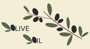 Illustrazione piana del ramo di olive nere Fotografia Stock