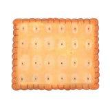Illustrazione quadrata del biscotto Fotografia Stock Libera da Diritti