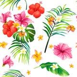 illustrazione realistica, modello senza cuciture con i fiori tropicali dell'ibisco e foglie di palma Fotografia Stock Libera da Diritti