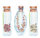 Illustrazione romantica e bottiglie dell'acquerello di favola con la fragola e lamponi, foglie di autunno e rami rossi del berrie Immagini Stock Libere da Diritti