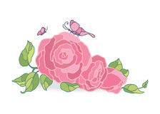 Illustrazione rosa di vettore delle rose sul campo bianco royalty illustrazione gratis