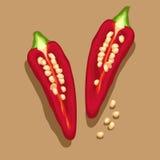 Illustrazione rossa del peperoncino rosso e Immagini Stock Libere da Diritti