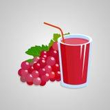 Illustrazione rossa del succo dell'uva Fotografia Stock Libera da Diritti