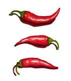Illustrazione rossa della penna del feltro dell'insieme di Chili Peppers Immagine Stock