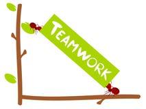 Illustrazione rossa di lavoro di squadra del testo delle formiche Fotografie Stock