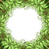 Illustrazione rotonda di vettore della struttura della palma Immagini Stock