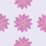 Illustrazione senza cuciture dell'ornamento del fiore Immagine Stock