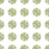 Illustrazione senza cuciture dell'ornamento del fiore Immagine Stock Libera da Diritti