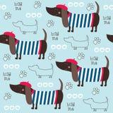 Illustrazione senza cuciture di vettore del modello del cane del bassotto tedesco Fotografie Stock Libere da Diritti