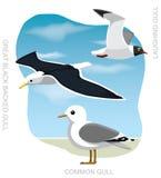 Illustrazione stabilita di vettore del fumetto del gabbiano dell'uccello Immagine Stock Libera da Diritti