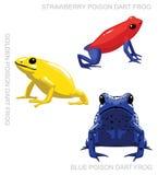 Illustrazione stabilita di vettore del fumetto della rana del dardo del veleno della rana illustrazione vettoriale