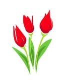 Illustrazione stilizzata del tulipano Fotografia Stock Libera da Diritti