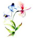 Illustrazione stilizzata dell'acquerello dei fiori Fotografia Stock