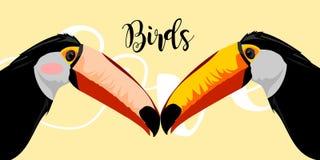 illustrazione sveglia di progettazione di arte del rangkong degli uccelli Fotografia Stock Libera da Diritti