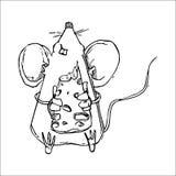 Illustrazione sveglia di vettore del topo di scarabocchio Immagini Stock Libere da Diritti