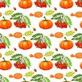 Illustrazione tradizionale senza cuciture di vettore di celebrazione del raccolto dell'alimento di festa della zucca di autunno d Fotografie Stock