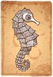 Illustrazione tribale dell'ippocampo di vettore Fotografie Stock Libere da Diritti