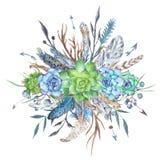 Illustrazione tribale selvaggia e libera dell'acquerello con i succulenti royalty illustrazione gratis