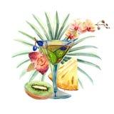 Illustrazione tropicale dell'acquerello con il cocktail, i frutti ed i fiori di estate illustrazione di stock