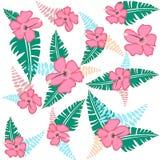 Illustrazione tropicale di vettore del modello di fiori Fotografia Stock Libera da Diritti