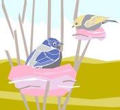 Illustrazione-uccelli nei loro nidi Immagine Stock