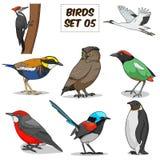 Illustrazione variopinta di vettore del fumetto stabilito dell'uccello Immagine Stock