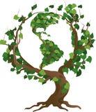 Illustrazione verde di vettore dell'albero del mondo Immagini Stock