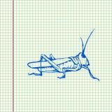 Illustrazione verde di vettore della cavalletta Fotografie Stock Libere da Diritti