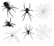 Illustrazioni del ragno di vettore Immagini Stock Libere da Diritti