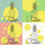 Illustrazioni stabilite di stile disegnato a mano di schizzo degli ananas maturi Illustrazione esotica di vettore della frutta tr Fotografie Stock Libere da Diritti