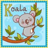Illustrerad alfabetbokstav K och koala. Royaltyfri Bild